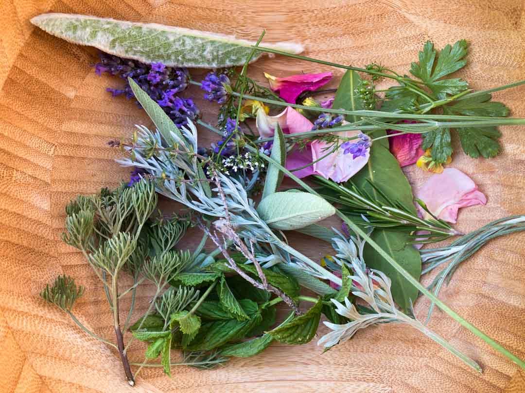 fiori appena raccolti